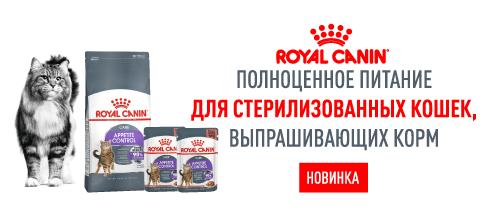 Новинка от TM Royal Canin для стерилизованных кошек выпрашивающих корм