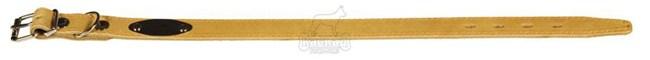 Ошейник кожаный с синтепоном, ширина 25 мм