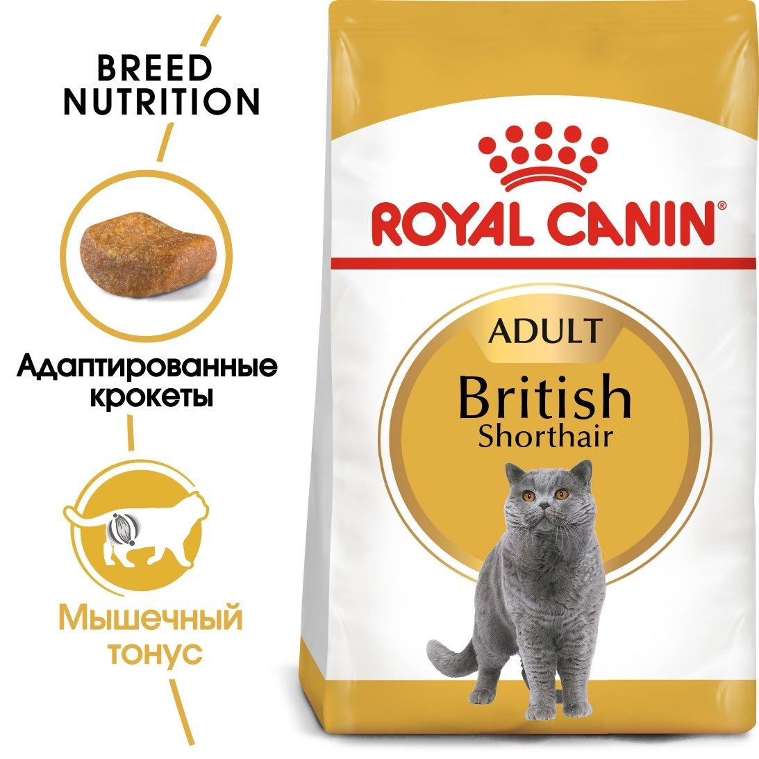 Royal Canin Adult British Shorthair сухой корм для взрослых кошек породы Британская короткошерстная