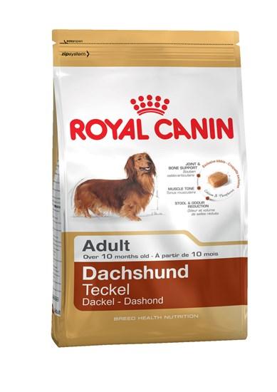 Royal Canin Dachshund Teckel Adult сухой корм для взрослых собак породы такса